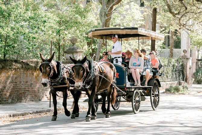 Daytime Carriage Tour of Historic Charleston