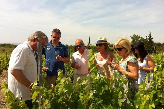 Private Wine day tour from Carcassonne and around.