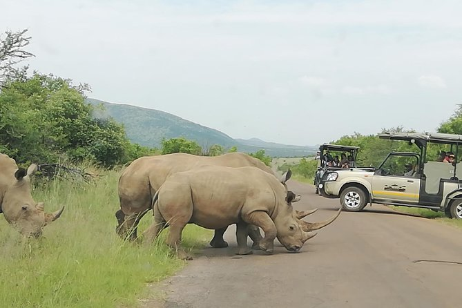One day Kruger National Park tour Private