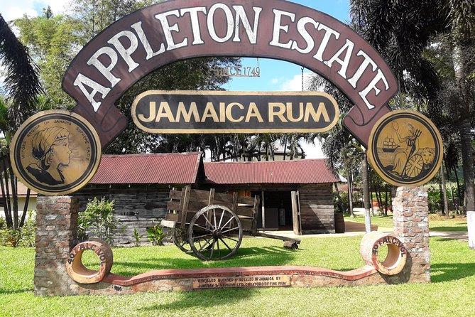 Visita a la fábrica de ron Appleton Estate desde Montego Bay