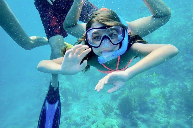 Private Looe Key Snorkel from Big Pine Key