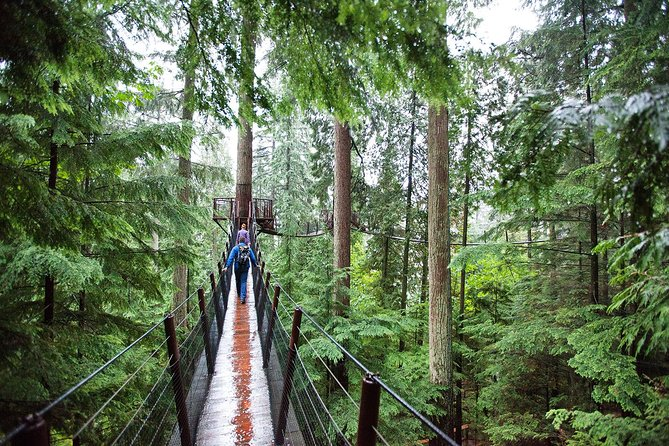 Skip the Line:Capilano Suspension Bridge Park Ticket w/Shuttle from Vancouver photo 9