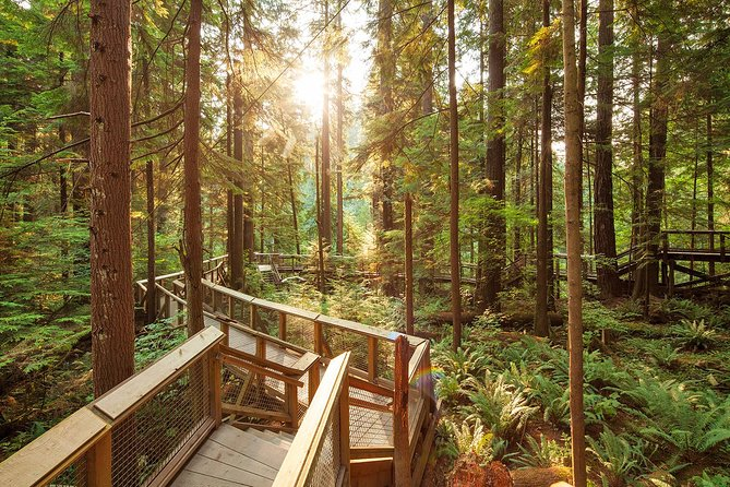 Skip the Line:Capilano Suspension Bridge Park Ticket w/Shuttle from Vancouver photo 10