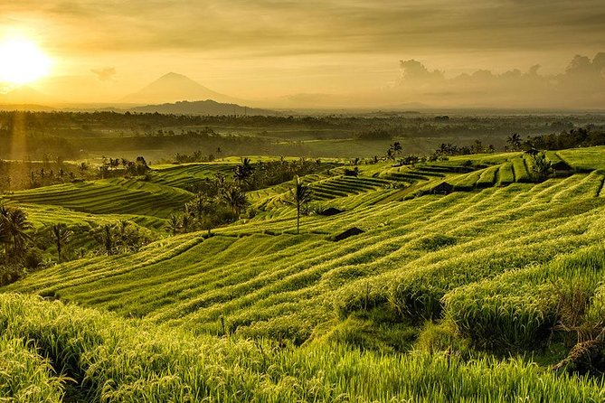 Private Tour in Bali: Visit The Highlight of Bali in 2 Day Tours