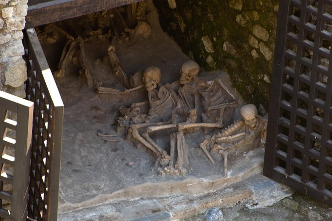 Private Tour: Day Trip Excursion to Herculaneum, Positano and Sorrento