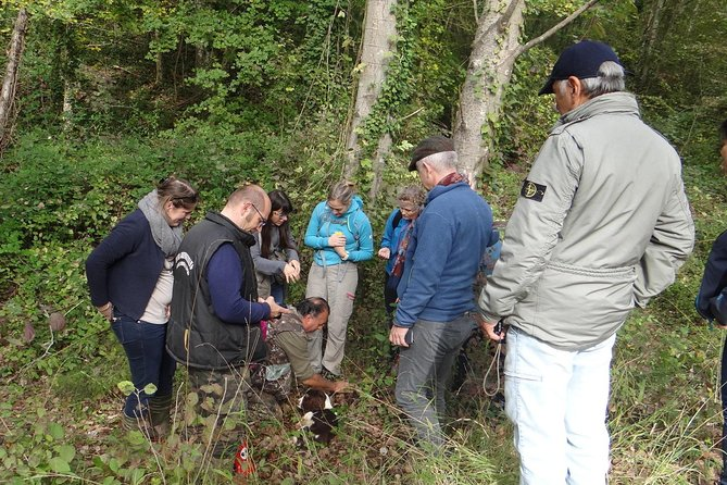 Private Truffle hunt in Tuscany from Florence