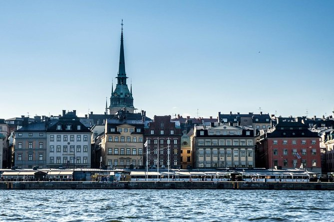 Private Car Tour of Stockholm with a Live guide, including the Vasa museum.