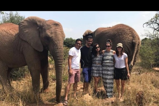 Elephant Walk Guided Tour from Johannesburg R2150 Private photo 1
