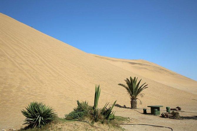 - Walvis Bay, NAMIBIA
