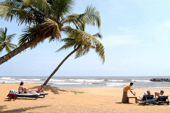Shore excursion Colombo port passenger Terminal to Negombo Beach for 3 person