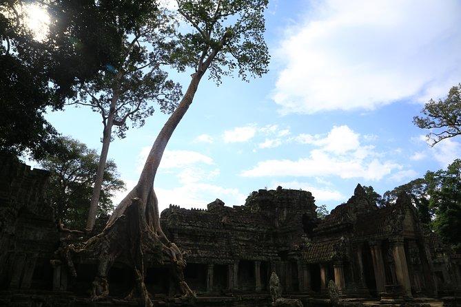 Angkor Sunrise Bike Tour-Off Road