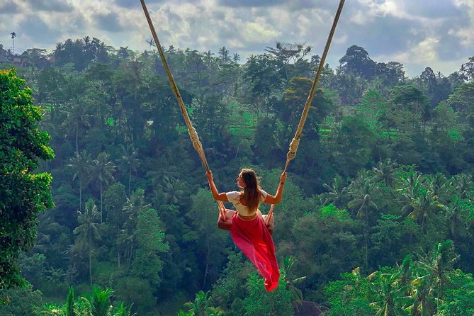 Jungle Swing and Ubud Tour