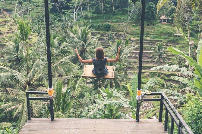 Jungle Swing and Ubud Tour