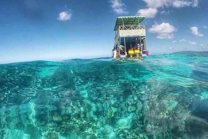 Little Tobago Island Tours