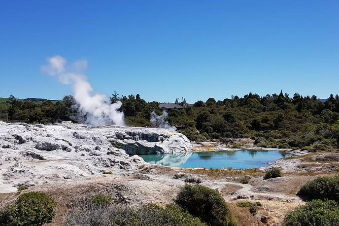 All-inclusive shore excursion: Geysers & Authentic Maori Cultural Experience