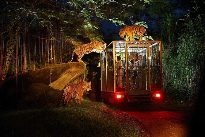 Night Safari Bali with BBQ Dinner and Hotel Tranfers