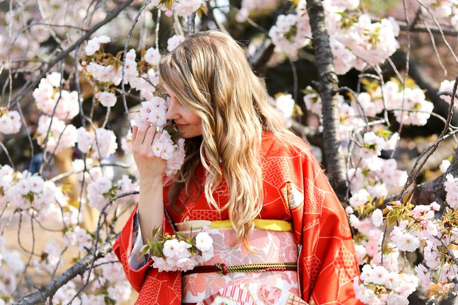 Private Kimono Photo Tour in Tokyo