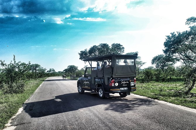 Kruger National Park Afternoon Sunset Safari Tour
