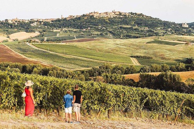 Vino Nobile di Montepulciano Wine Tour - Meet the producers