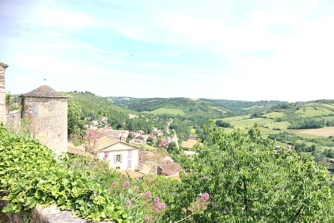 Day tour to Albi & Cordes sur Ciel.Private tour from Toulouse. photo 4