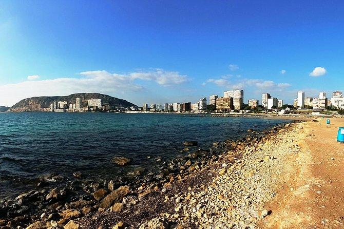 Alicante Electric Bike Tour: wijnervaring en tapastour