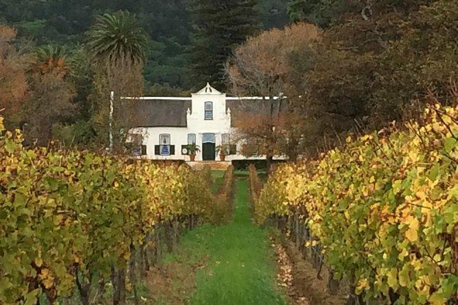 Historical Constantia Winelands Tour