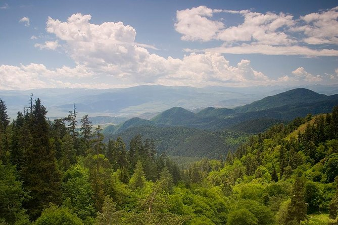 SPEND TWO UNFORGOTTABLE DAYS IN BORJOMI & BAKURIANI (All Inclusive!)