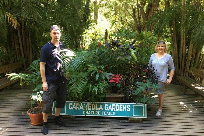 Shore Excursion: Roatan Botanical Garden with Monkey/Sloth and Butterfly Garden