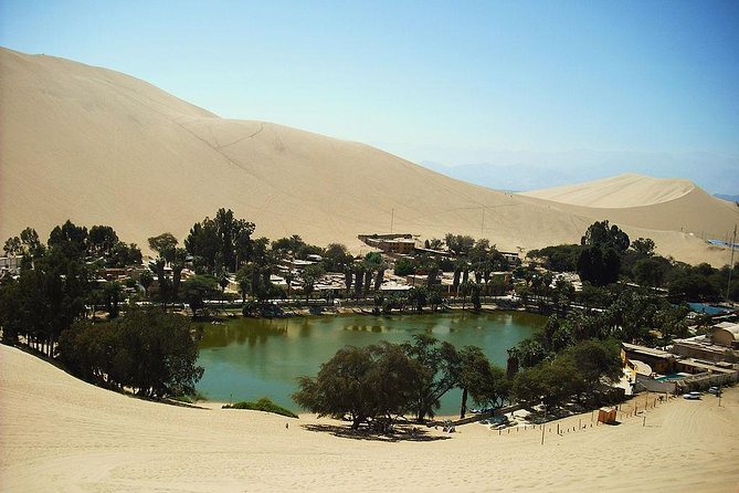From Lima: Ballestas, Winery & Huacachina Oasis