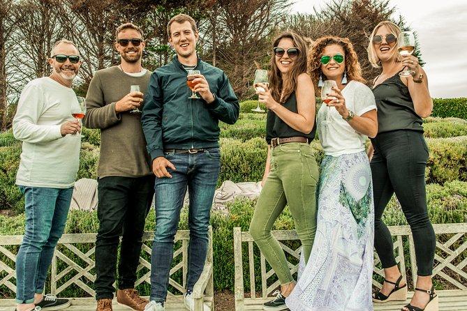 Small-Group Wine Tasting Experience on Waiheke Island