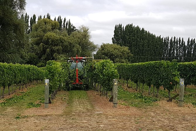 Full-Day Marlborough Wine Tour Including Wine Tasting photo 2