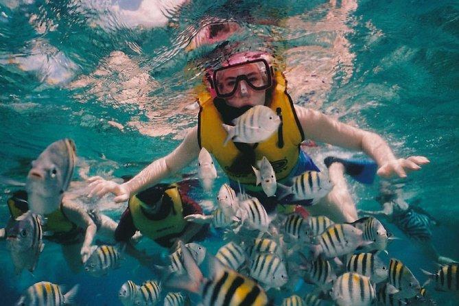 2 Hours snorkeling Activities in Padang bay, Bali