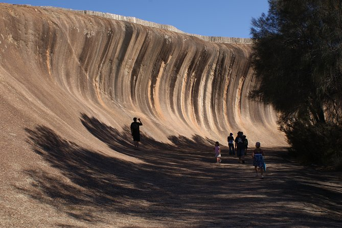 Wave Rock, Pinnacles och Rottnest One Day Airplane Tour
