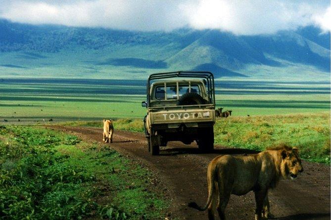 12 Days , 11 Nights wonders of Kenya and Tanzania budget camping safari