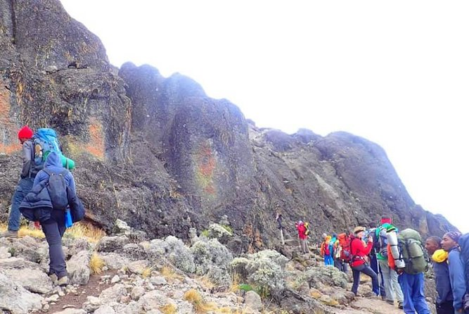 8 Days itinerary Kilimanjaro trek - Lemosho route photo 10