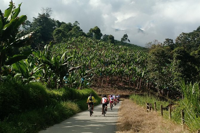 Bike expedition La Vuelta al Quindio Colombia Coffee region 4 nights 5 days