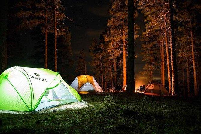 Trekking and overnight camp in Rishikesh