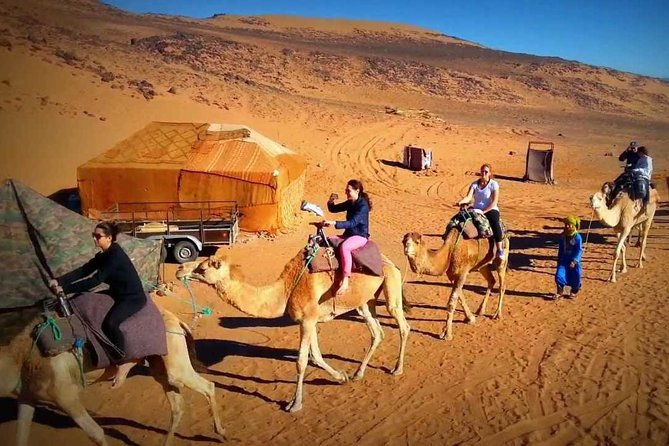 2 days private desert tour from Marrakech to draa valley including camel ride photo 11