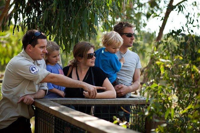 Phillip Island 3 Park Pass: Penguin Parade, Koala Centre and Churchill Island