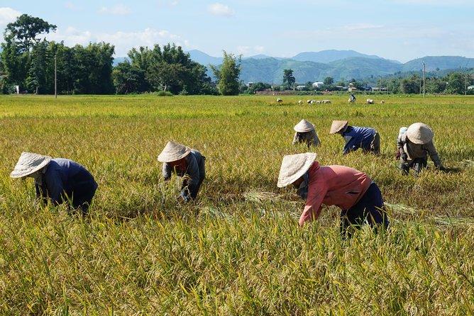 Nha Trang Secret countryside and water fall
