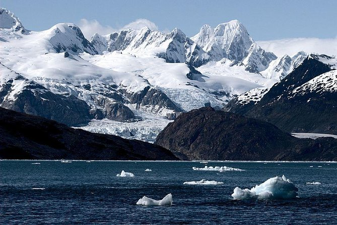 Full-day experience in Chilean Antártica