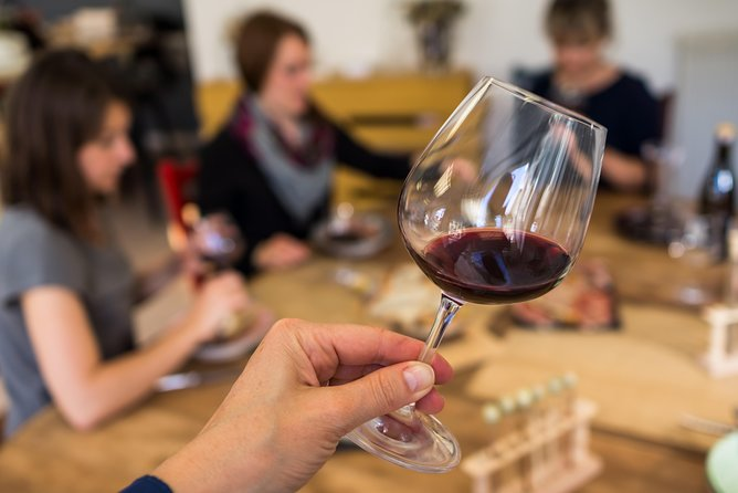 Wheelchair friendly Rioja Wine Tour
