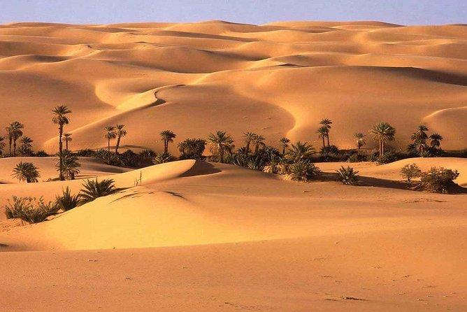 Oasis & Desert - 2 days - Private tour