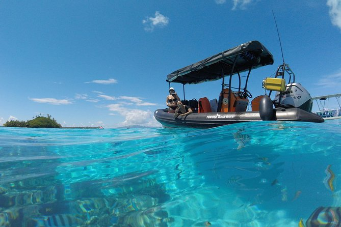 Toora Bora Bora Snorkeling Passeios na Lagoa