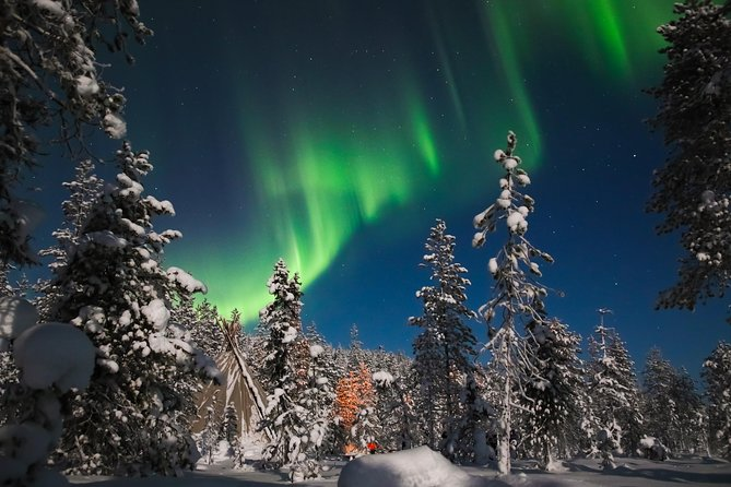 Aurora Borealis Picnic in Rovaniemi