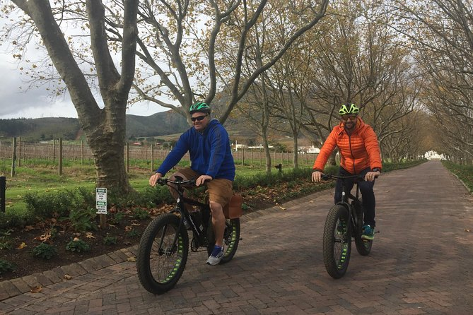 Stellenbosch E-Bike Wine Farm Tours