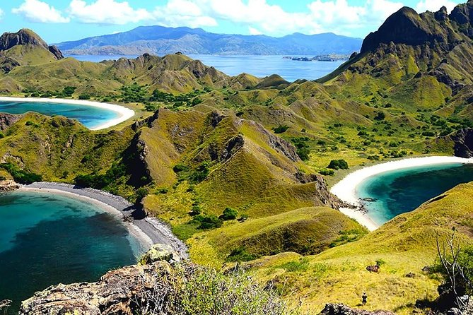 1- day Komodo Island Hopping Tour by Speed Boat departure From Labuan bajo