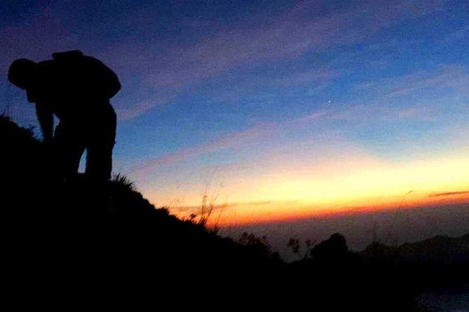 Bali Mount Batur Private Tour