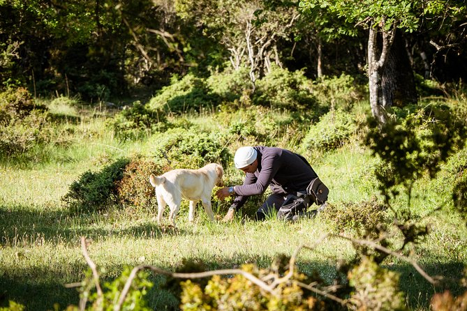 Truffle Hunting at Meteora