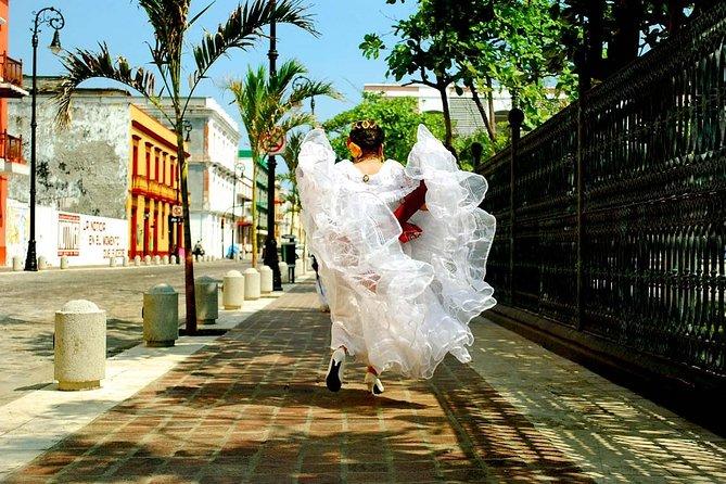 City Tour with San Juan de Ulua